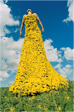 dandelion-dress